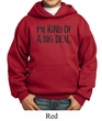 Kids Hoodie Kind of a Big Deal Black Print Hoody