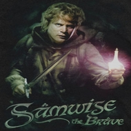 Lord Of The Rings Samwise Shirts