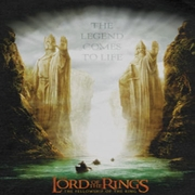 Lord Of The Rings The Fellowship Shirts