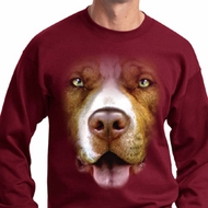 Mens Pit Bull Sweatshirt Big Pit Bull Face Sweat Shirt