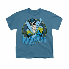 Nightwing DC Comics Shirt Nightwing 2 Kids Slate Youth Tee T-Shirt