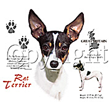 Rat Terrier T-shirts