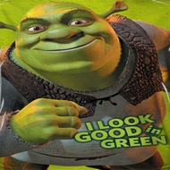 Shrek I Look Good In Green Sublimation Shirts