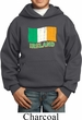 St Patrick's Day Distressed Ireland Flag Kids Hoody