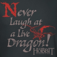 The Hobbit Desolation Of Smaug Never Laugh Shirts