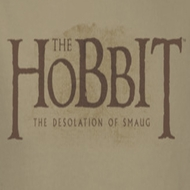 The Hobbit Desolation Of Smaug Textured Logo Shirts
