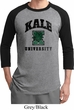 Yoga Kale University Lights Mens Raglan Shirt
