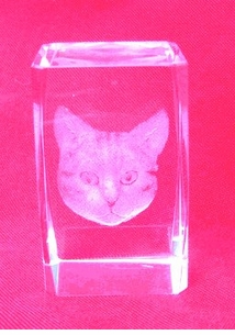 Lazer Crystal Cat Paperweight