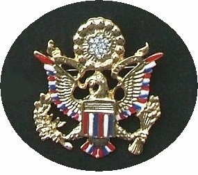 Patriotic Eagle Crest Medallion Pin