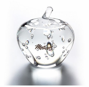 Pretty Effervescence Glass Apple Award - Low Minimum!