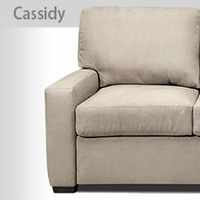 Cassidy Comfort Sleeper <br />by American Leather