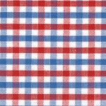 Red, White and Blue Gingham