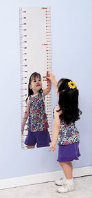 "Measure Me Mirror 32"" Long"