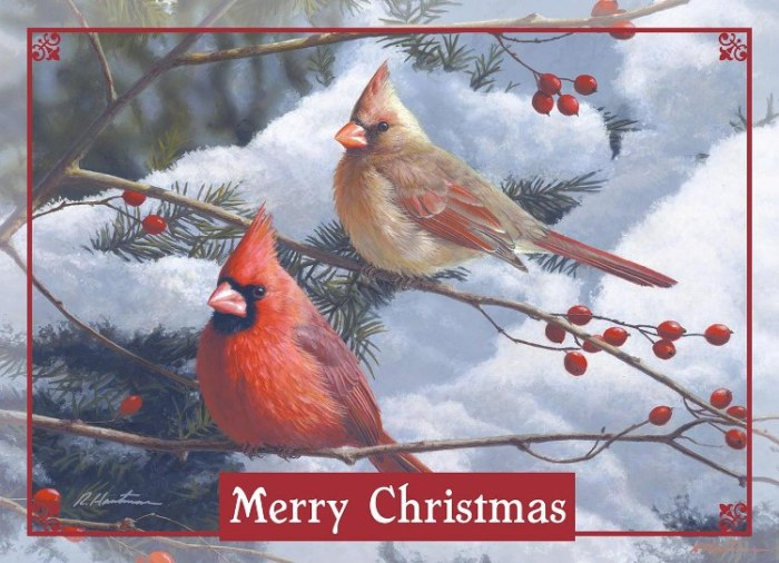 "2018 Legacy Boxed Christmas Cards - ""Cardinals & Berries"""