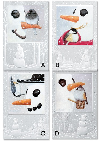 "Assorted Boxed Christmas Cards - ""Birds Of A Feather"""