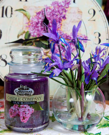 "Christmas Tree Hill Fragranced Candle - 22 oz. Jar - ""Lilac Blossom"""