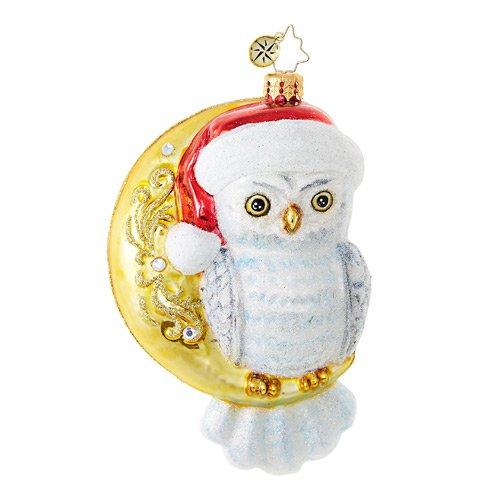 "Christopher Radko Glass Ornament - ""Hooo Knew"""