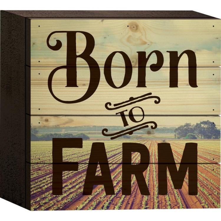 "Decorative Boxed Pallet Sign - ""Born To Farm"""