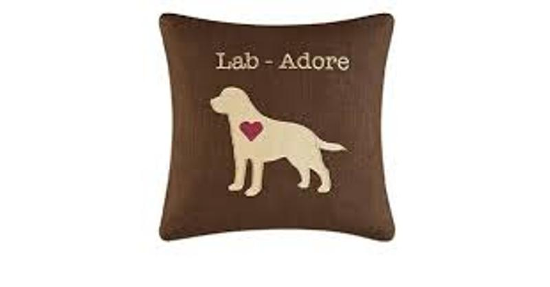 Decorative Embroidered Pillow - Lab Adore - 14in