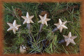 Mini Bulb String Lights - Warm White Star - Electric/Brown Cord - Standard Grade Indoor/Outdoor - Set of 20