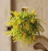 Eucalyptus Candle Ring - Yellow Berries - 3.5 Inch