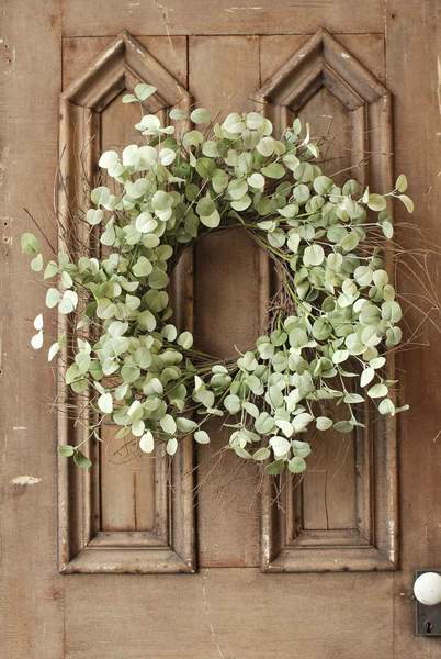 "Eucalyptus Wreath - ""Silver Drop Eucalyptus Wreath"" - 26 Inch"