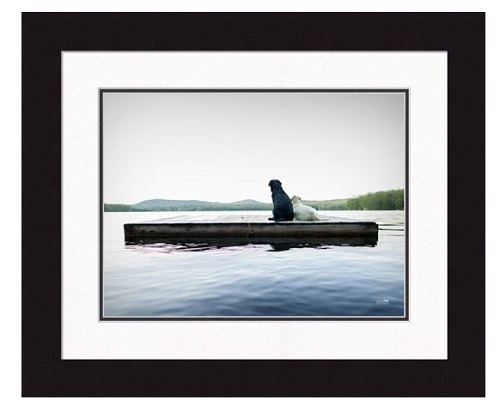 "Framed Picture - ""Adrift"" -16"" x 20"""
