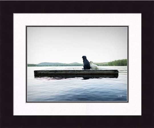 "Framed Picture - ""Adrift"" -16in x 20in - Artist Ron Schmidt"