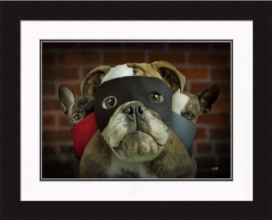 "Framed Picture - ""Bandits - Bulldog"" - 16in x 20in - Artist Ron Schmidt"