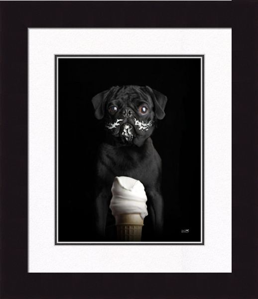 "Framed Picture - ""Frenchy"" - 20in x 24in - Artist Ron Schmidt"