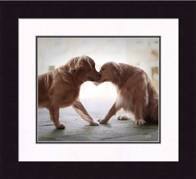"Framed Picture - ""Heart and Soul - Golden Retriever"" - 16in x 20in - Artist Ron Schmidt"