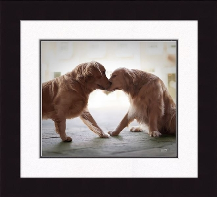 Framed Picture - Heart and Soul - 16x20 - Ron Schmidt