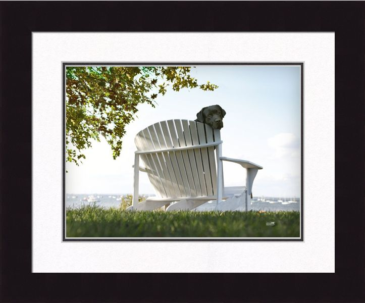 "Framed Picture - ""Lolly"" - 24in x 20in - Artist Ron Schmidt"