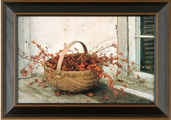Framed Pictures by Photographer Irvin Hoover
