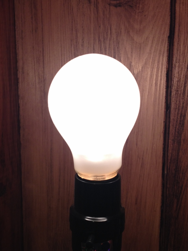 Super Long-Lasting Incandescent Light Bulb - 25W Frosted - A19 - Last 10,000 Hours!