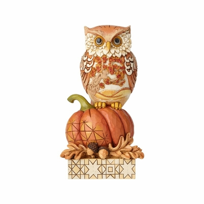 "Jim Shore Figurine - ""Harvest Owl on Pumpkin"" - 2018"