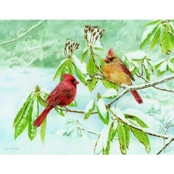 "Lang Boxed Christmas Cards - ""Cardinals On A Branch"" - Artist Jane Shasky"