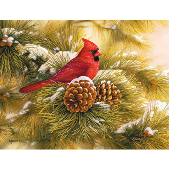 "Lang Boxed Christmas Cards - ""December Dawn Cardinal"" -  Artist Rosemary Millette"