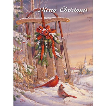Lang Boxed Christmas Cards - Wintertime Cardinal - Sam Timm