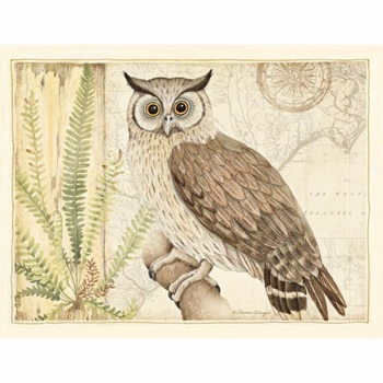 "Lang Boxed Note Cards  - ""Owl Sanctuary"" - Artist Susan Winget"
