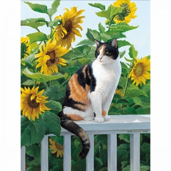"Lang Boxed Note Cards - ""Sunny Cat""- Artist Persis Clayton"