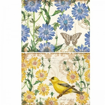 "Lang Deluxe Boxed Note Cards - ""Chicory & Goldfinch"" -  Artist Tim Coffey"