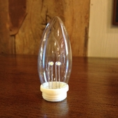 "Light Bulb - Torpedo Bulb Replacement for Dual-Intensity Window Candles"" - Pack of 2"