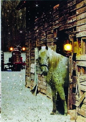 "Lighted Canvas Pictures - ""Horse"""