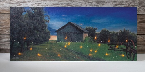 "Lighted Canvas Pictures - ""Lightning Bug"""