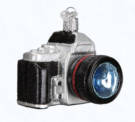 "Old World Christmas Glass Ornament - ""Camera"""