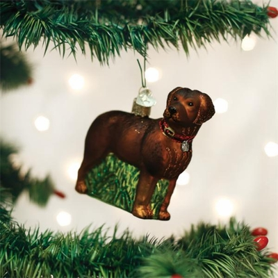 "Old World Christmas Glass Ornament - ""Standing Chocolate Lab"""