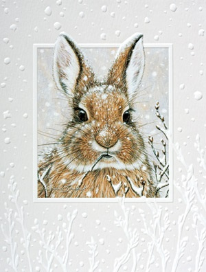 "Petite Boxed Christmas Cards - ""Cool Cotton Tail"""