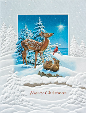 "Petite Boxed Christmas Cards - ""Following The Star"""