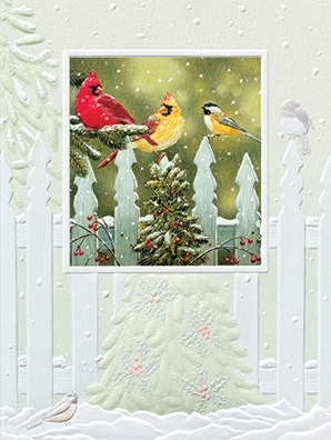 "Petite Boxed Christmas Cards - ""Flurry Frenzy"""